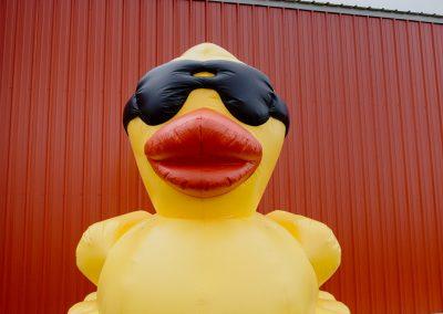 duck derby-4